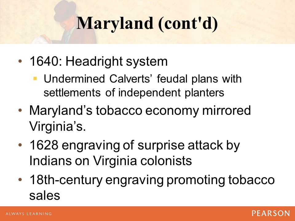 Maryland (cont d) 1640: Headright system  Undermined Calverts' feudal plans with settlements of independent planters Maryland's tobacco economy mirrored Virginia's.