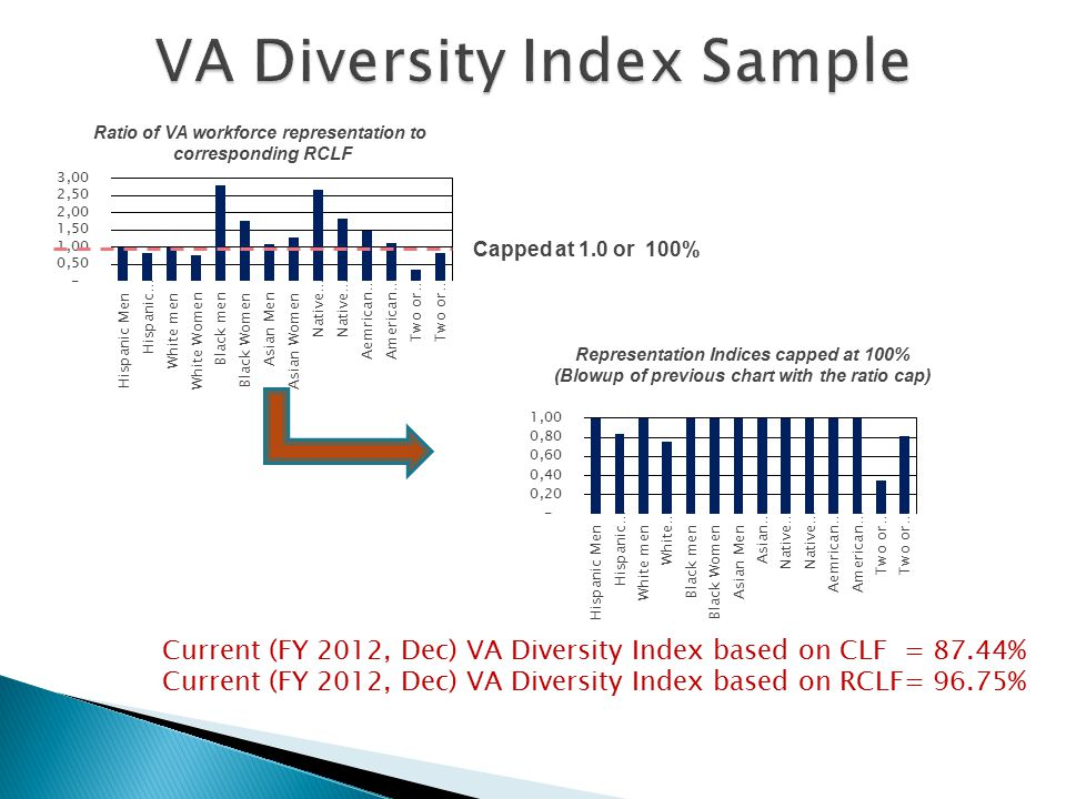 91% Current (FY 2012, Dec) VA Diversity Index based on CLF = 87.44% Current (FY 2012, Dec) VA Diversity Index based on RCLF= 96.75% Capped at 1.0 or 100% Representation Indices capped at 100% (Blowup of previous chart with the ratio cap) Ratio of VA workforce representation to corresponding RCLF 19