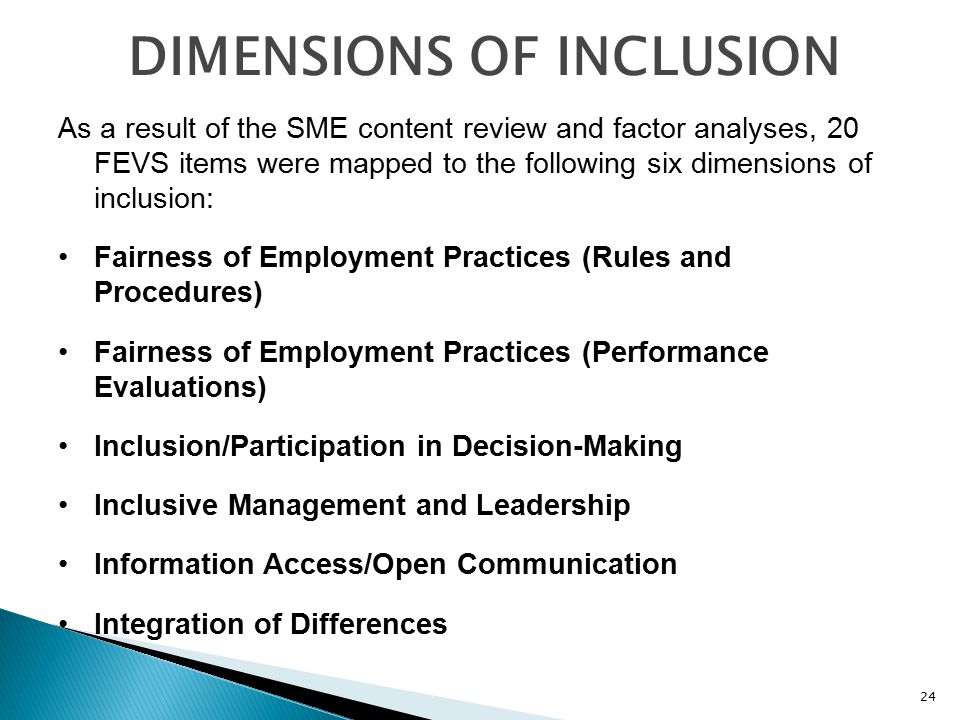 DIMENSIONS OF INCLUSION As a result of the SME content review and factor analyses, 20 FEVS items were mapped to the following six dimensions of inclusion: Fairness of Employment Practices (Rules and Procedures) Fairness of Employment Practices (Performance Evaluations) Inclusion/Participation in Decision-Making Inclusive Management and Leadership Information Access/Open Communication Integration of Differences 24