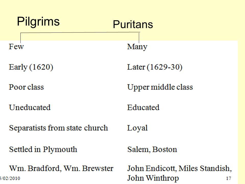 Pilgrims Puritans