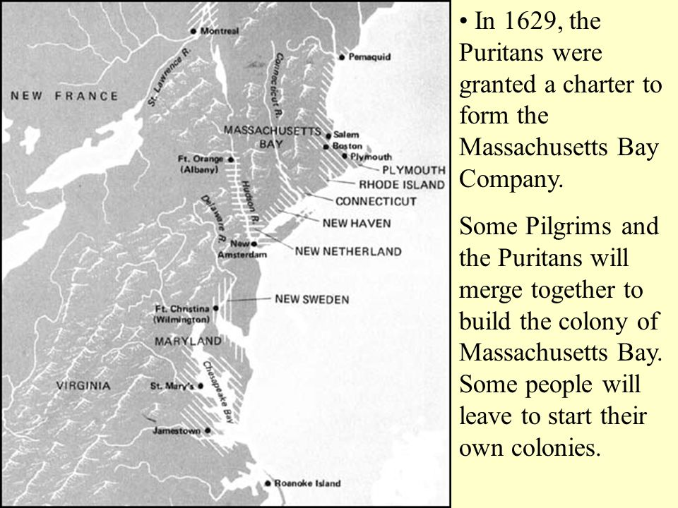 In 1629, the Puritans were granted a charter to form the Massachusetts Bay Company. Some Pilgrims and the Puritans will merge together to build the co
