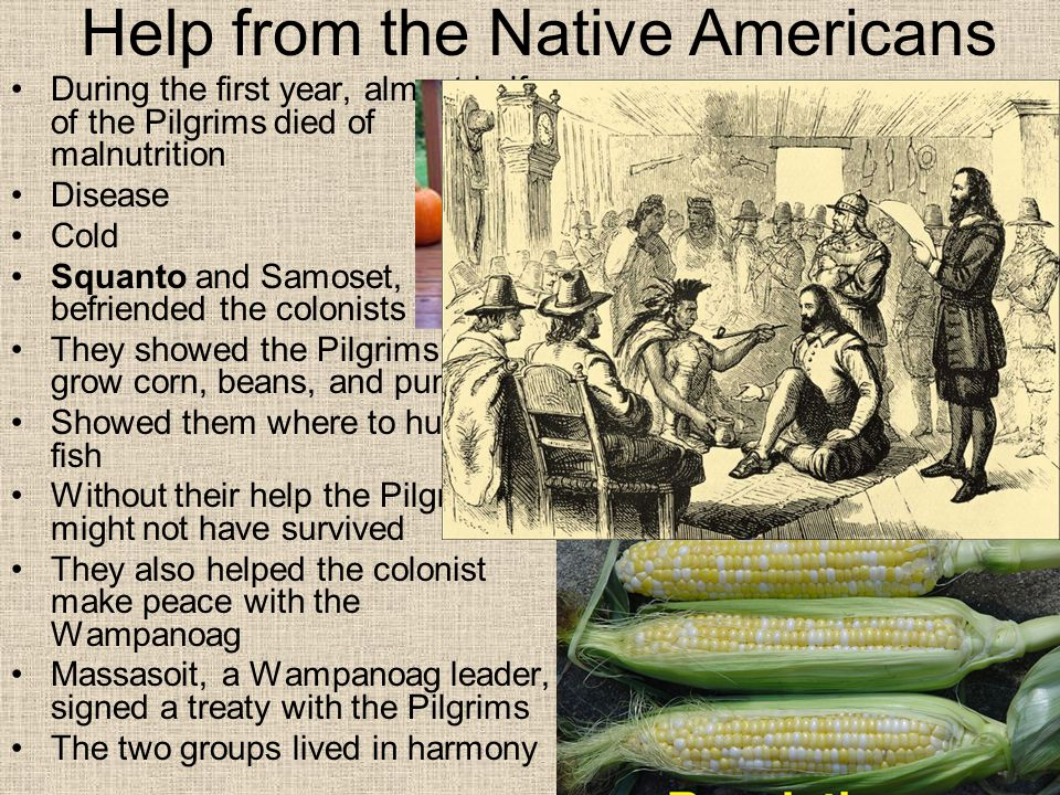Help from the Native Americans During the first year, almost half of the Pilgrims died of malnutrition Disease Cold Squanto and Samoset, befriended th