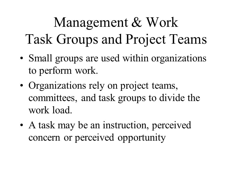 Management & Work Task Groups and Project Teams Small groups are used within organizations to perform work. Organizations rely on project teams, commi