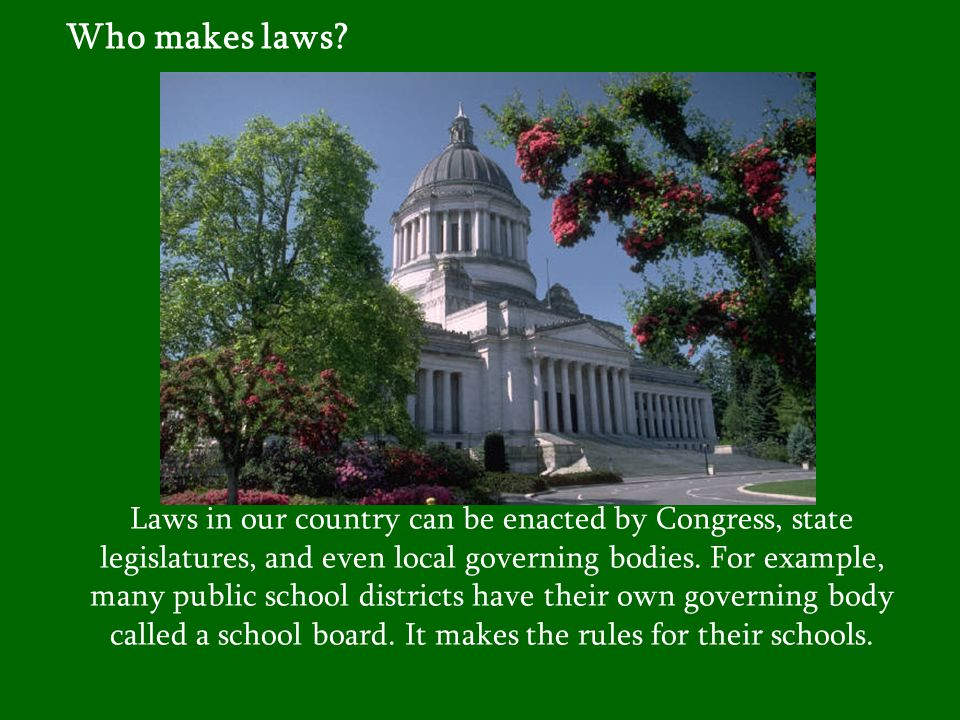 Who makes laws.