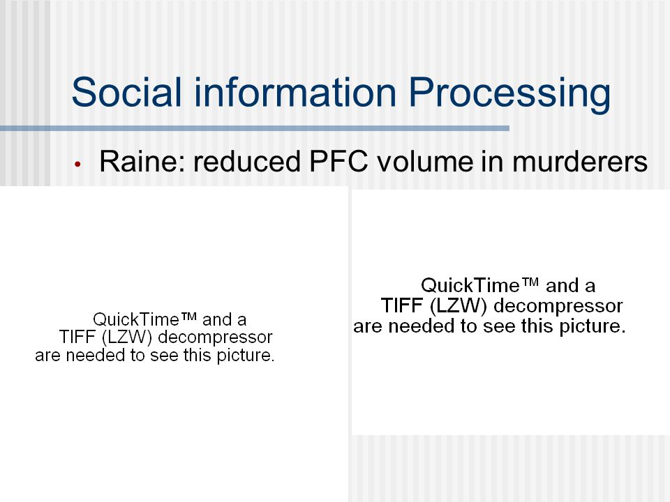Social information Processing Raine: reduced PFC volume in murderers