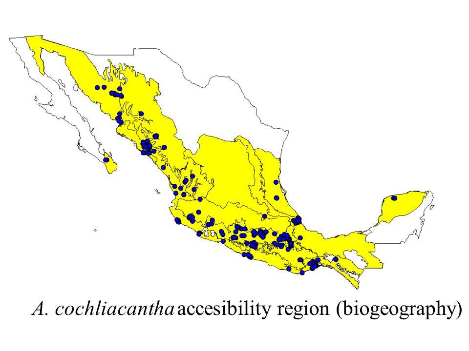 A. cochliacantha accesibility region (biogeography)