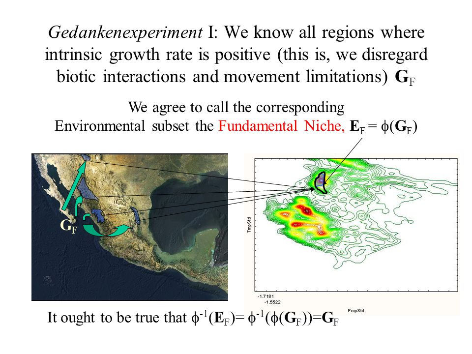 Gedankenexperiment I: We know all regions where intrinsic growth rate is positive (this is, we disregard biotic interactions and movement limitations) G F We agree to call the corresponding Environmental subset the Fundamental Niche, E F =  (G F ) It ought to be true that  -1 (E F )=  -1 (  (G F ))=G F GFGF