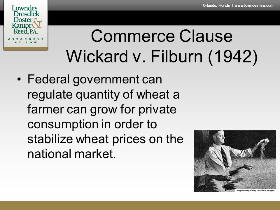 Orlando, Florida | www.lowndes-law.com Commerce Clause Wickard v. Filburn (1942) Federal government can regulate quantity of wheat a farmer can grow f