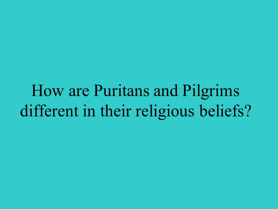 How are Puritans and Pilgrims different in their religious beliefs