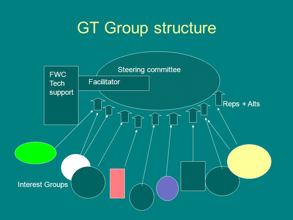 Steering committee FWC Tech support Reps + Alts Interest Groups Facilitator GT Group structure