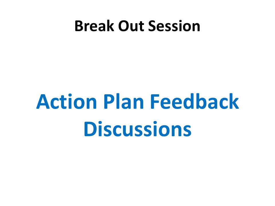 Break Out Session Action Plan Feedback Discussions