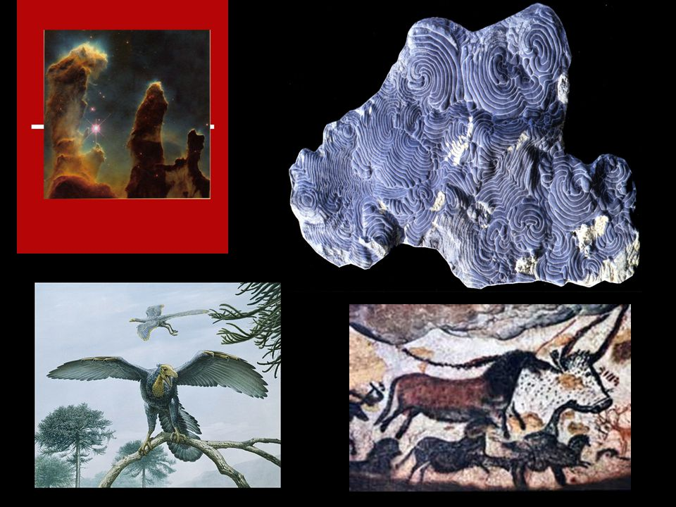1. Ban Evolution Antievolution laws 1919-1927