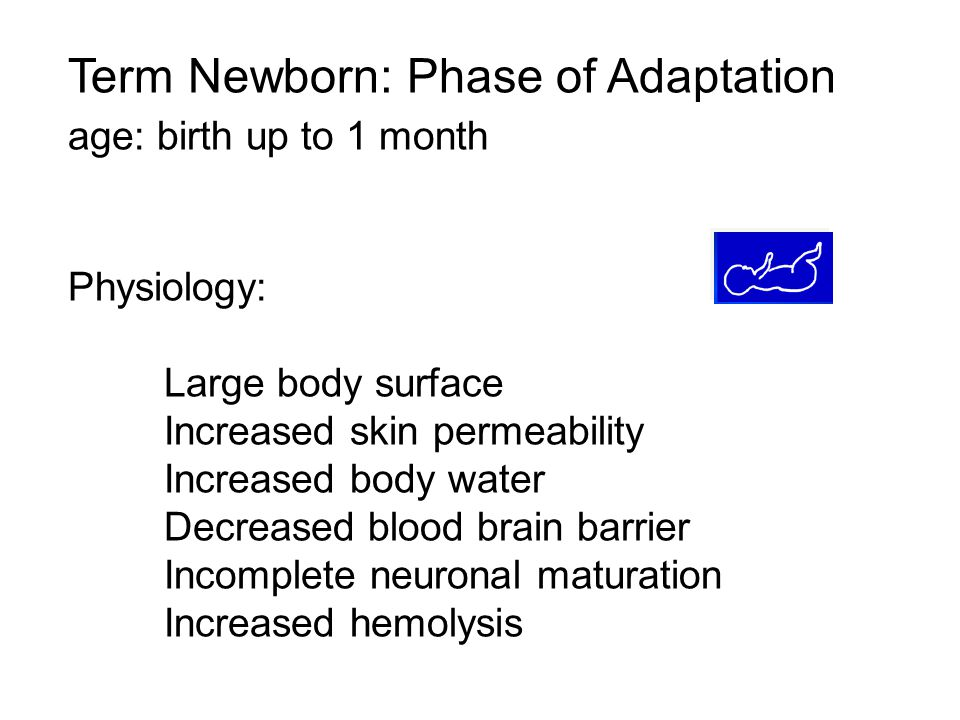 Term Newborn: Phase of Adaptation age: birth up to 1 month Physiology: Large body surface Increased skin permeability Increased body water Decreased b