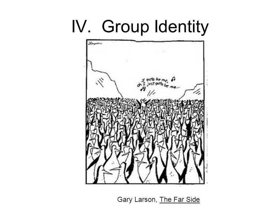 IV. Group Identity Gary Larson, The Far Side
