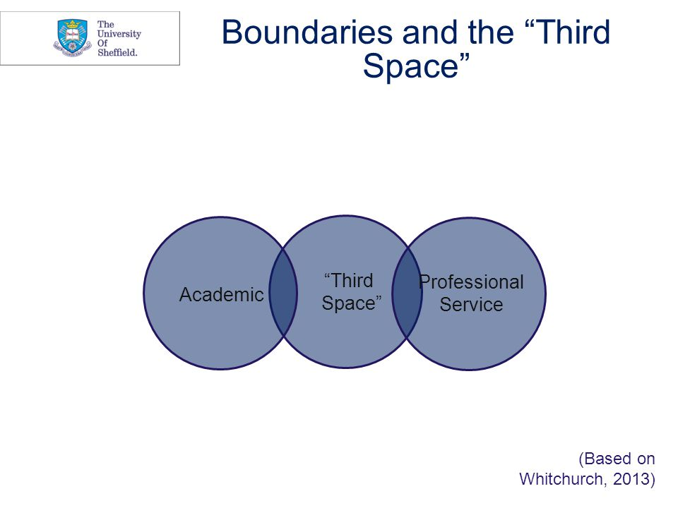 Boundaries and the Third Space Academic Professional Service Third Space (Based on Whitchurch, 2013)