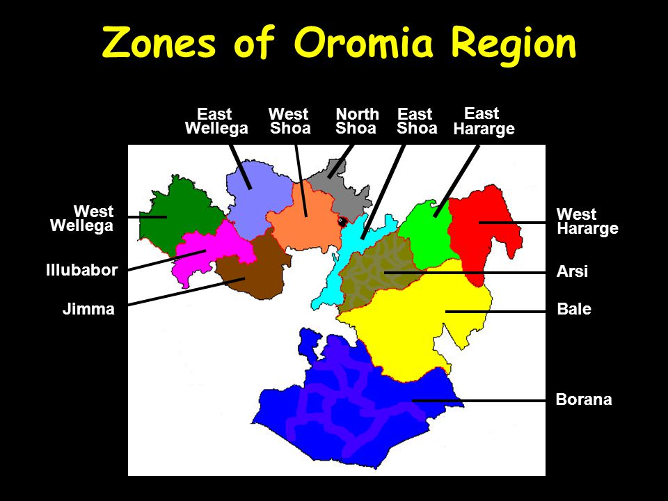 Zones of Oromia Region Borana Arsi West Hararge East Hararge Bale North Shoa East Shoa West Shoa Jimma East Wellega West Wellega Illubabor