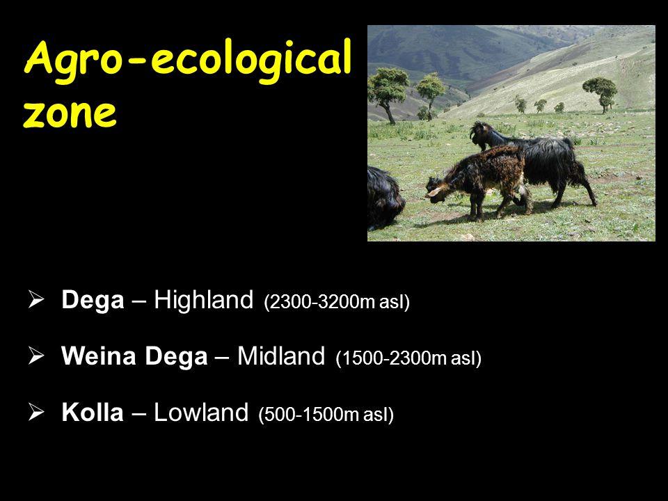 Agro-ecological zone  Dega – Highland (2300-3200m asl)  Weina Dega – Midland (1500-2300m asl)  Kolla – Lowland (500-1500m asl)