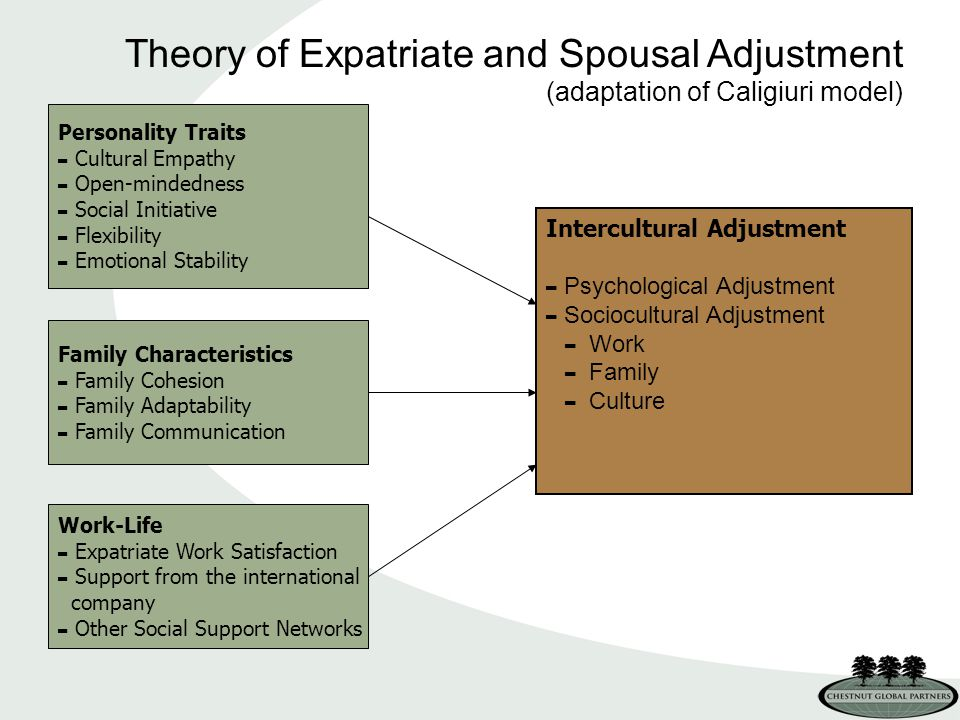Personality Traits - Cultural Empathy - Open-mindedness - Social Initiative - Flexibility - Emotional Stability Theory of Expatriate and Spousal Adjustment (adaptation of Caligiuri model) Family Characteristics - Family Cohesion - Family Adaptability - Family Communication Work-Life - Expatriate Work Satisfaction - Support from the international company - Other Social Support Networks Intercultural Adjustment - Psychological Adjustment - Sociocultural Adjustment - Work - Family - Culture