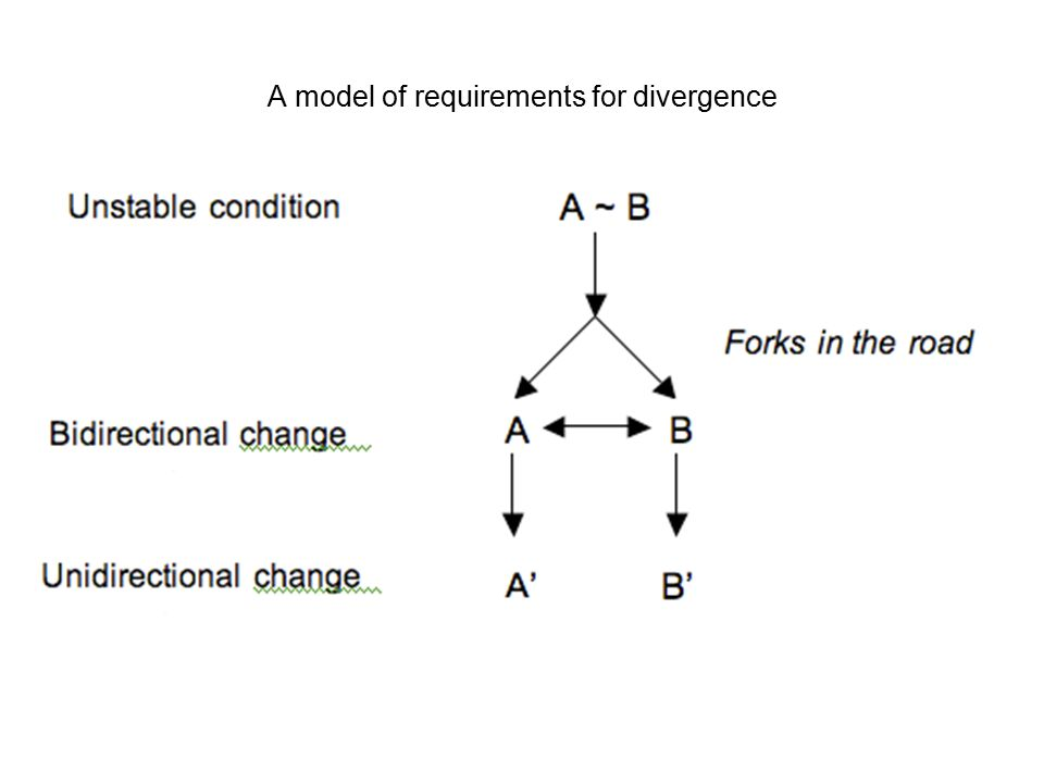 Model of divergence The divergence of neighboring dialects requires alternating states of bidirectional changes followed by unidirectional changes in the form of mergers or chain shifts