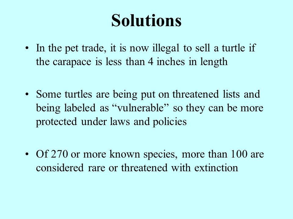 Solutions In the pet trade, it is now illegal to sell a turtle if the carapace is less than 4 inches in length Some turtles are being put on threatened lists and being labeled as vulnerable so they can be more protected under laws and policies Of 270 or more known species, more than 100 are considered rare or threatened with extinction