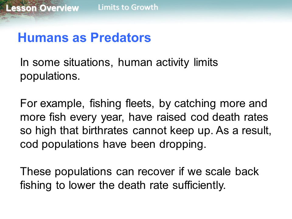 Lesson Overview Lesson Overview Limits to Growth Humans as Predators In some situations, human activity limits populations. For example, fishing fleet