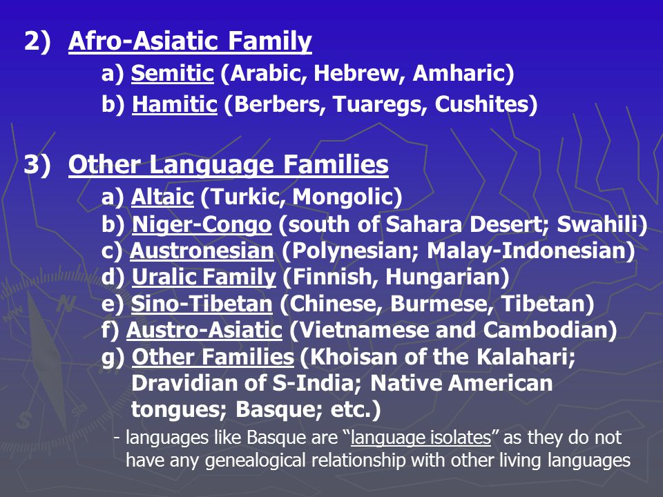 2) Afro-Asiatic Family a) Semitic (Arabic, Hebrew, Amharic) b) Hamitic (Berbers, Tuaregs, Cushites) 3)Other Language Families a) Altaic (Turkic, Mongo