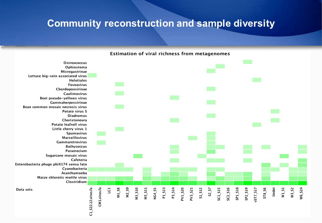Community reconstruction and sample diversity