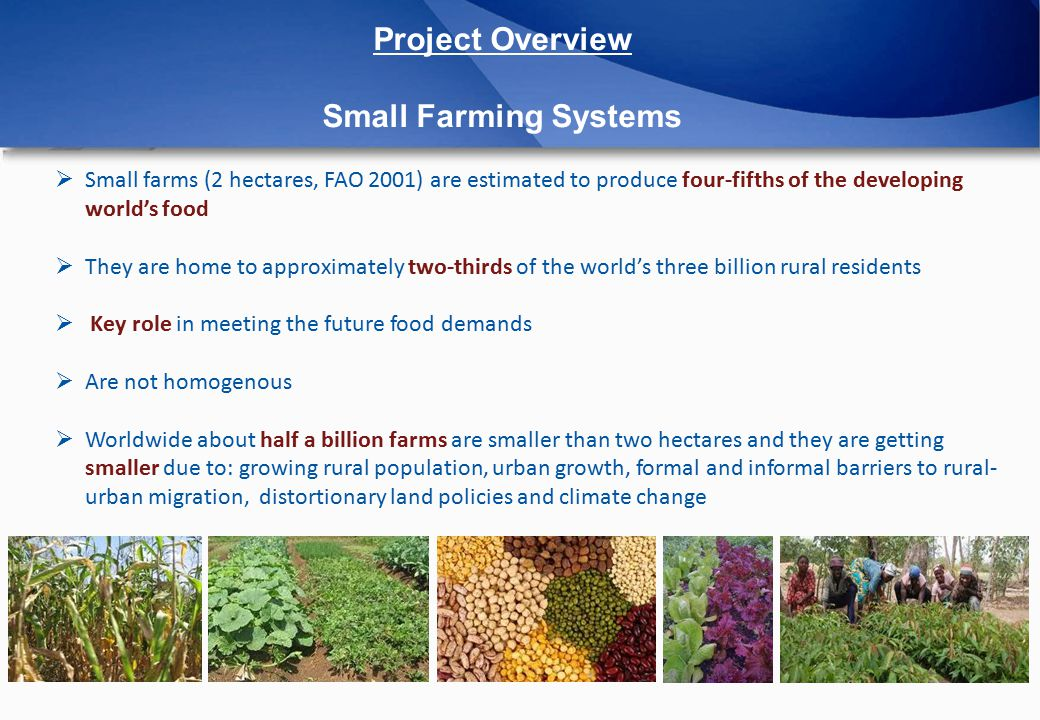Project Overview Small Farming Systems  Small farms (2 hectares, FAO 2001) are estimated to produce four-fifths of the developing world's food  They are home to approximately two-thirds of the world's three billion rural residents  Key role in meeting the future food demands  Are not homogenous  Worldwide about half a billion farms are smaller than two hectares and they are getting smaller due to: growing rural population, urban growth, formal and informal barriers to rural- urban migration, distortionary land policies and climate change