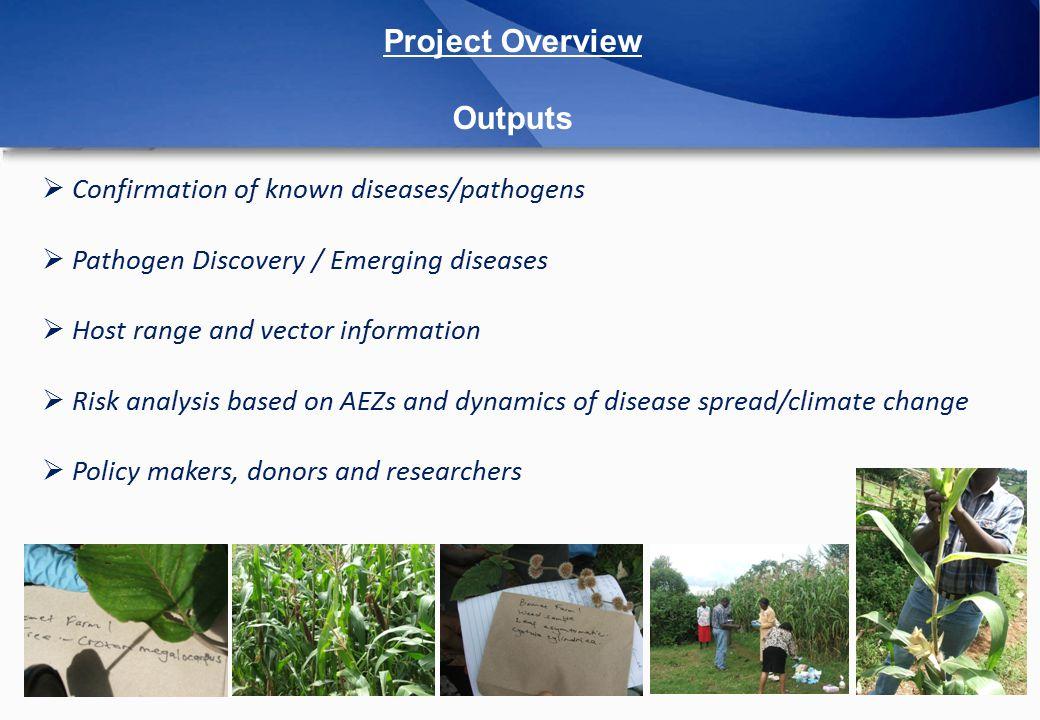Sugarcane Mosaic Virus Genome Coverage