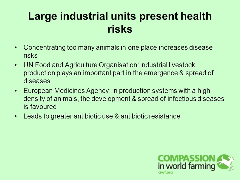 Large industrial units present health risks Concentrating too many animals in one place increases disease risks UN Food and Agriculture Organisation: industrial livestock production plays an important part in the emergence & spread of diseases European Medicines Agency: in production systems with a high density of animals, the development & spread of infectious diseases is favoured Leads to greater antibiotic use & antibiotic resistance
