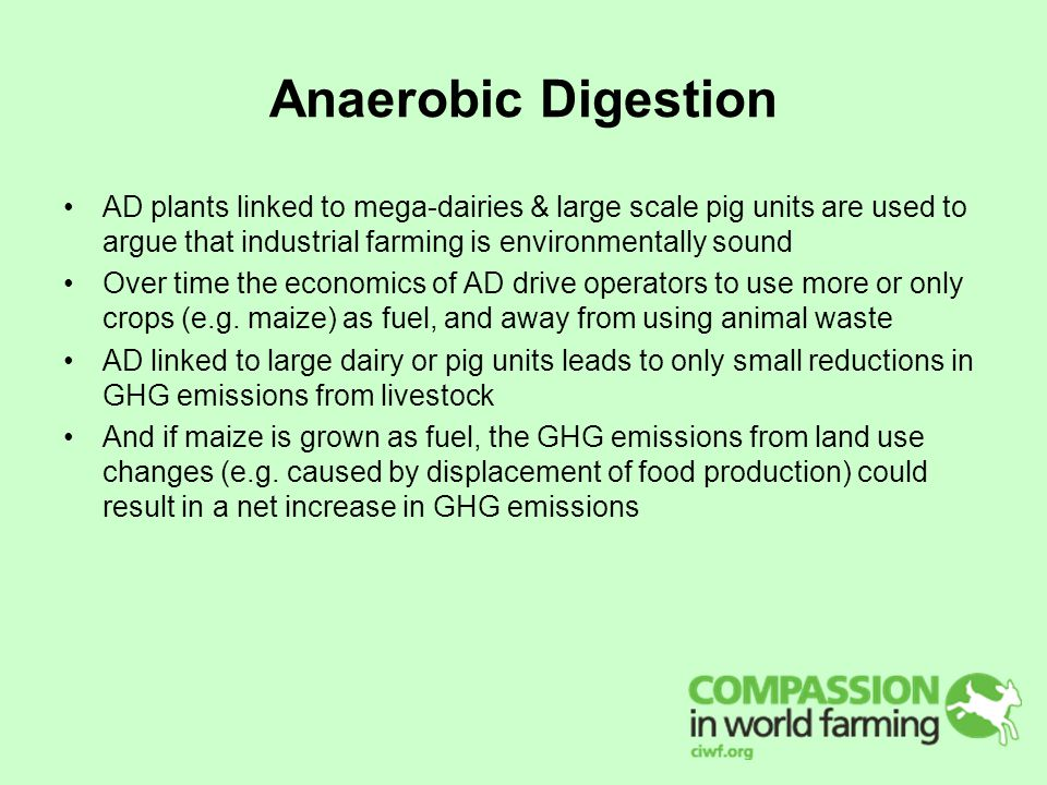 Anaerobic Digestion AD plants linked to mega-dairies & large scale pig units are used to argue that industrial farming is environmentally sound Over time the economics of AD drive operators to use more or only crops (e.g.