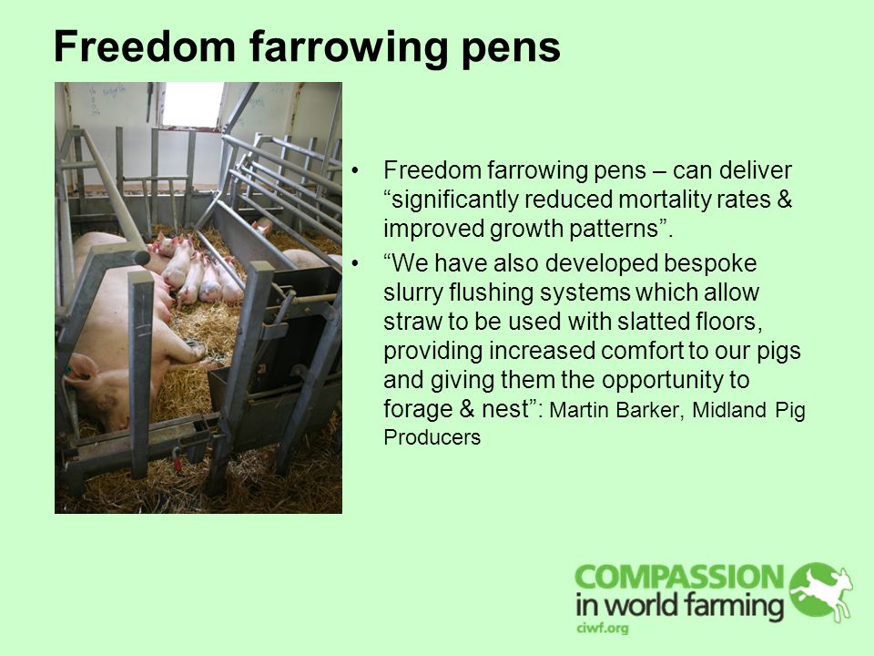 Freedom farrowing pens Freedom farrowing pens – can deliver significantly reduced mortality rates & improved growth patterns .