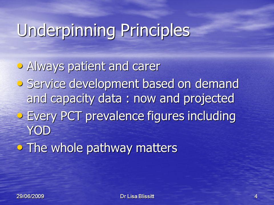29/06/2009Dr Lisa Blissitt4 Underpinning Principles Always patient and carer Always patient and carer Service development based on demand and capacity