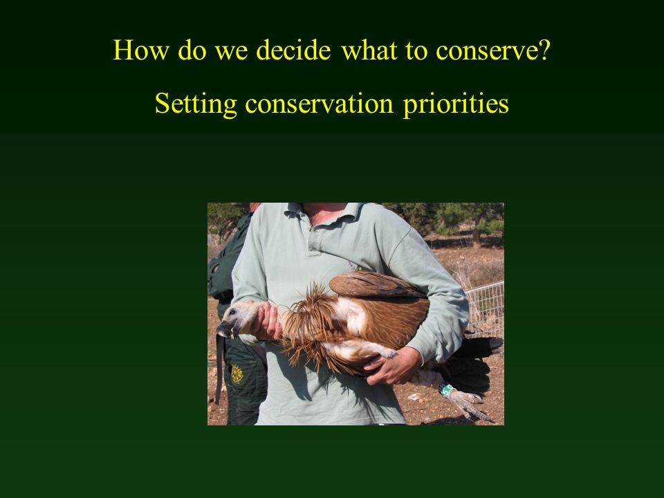 How do we decide what to conserve? Setting conservation priorities