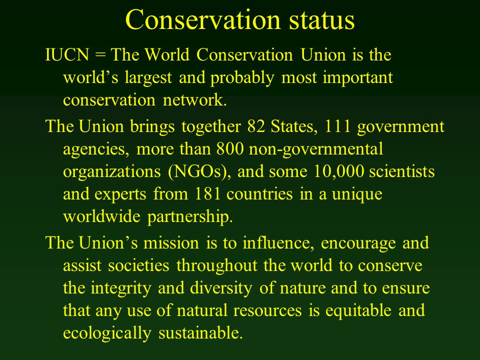 Conservation status IUCN = The World Conservation Union is the world's largest and probably most important conservation network. The Union brings toge