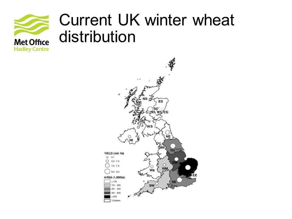 Current UK winter wheat distribution