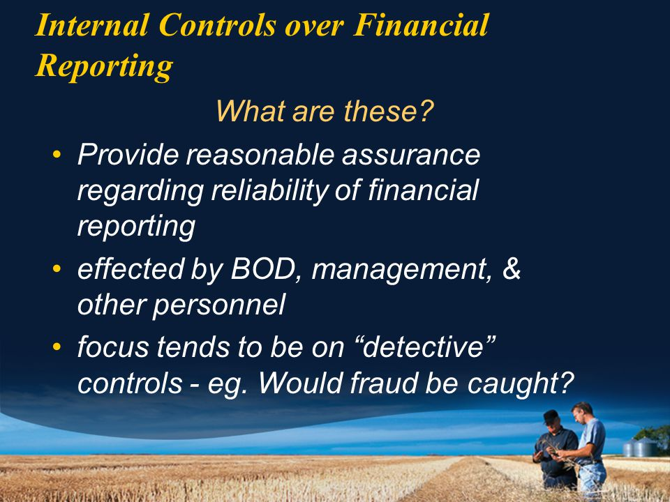 Internal Controls over Financial Reporting What are these.