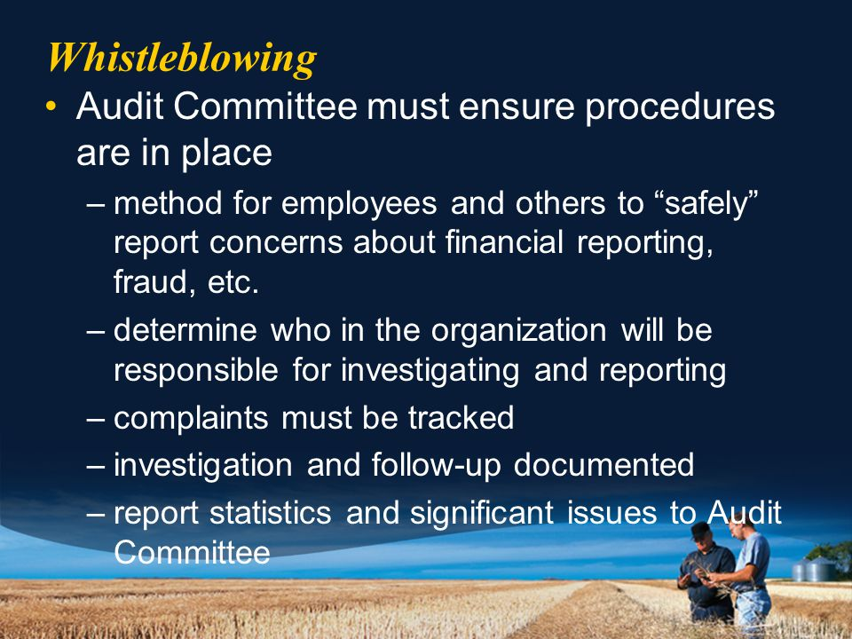 Whistleblowing Audit Committee must ensure procedures are in place –method for employees and others to safely report concerns about financial reporting, fraud, etc.
