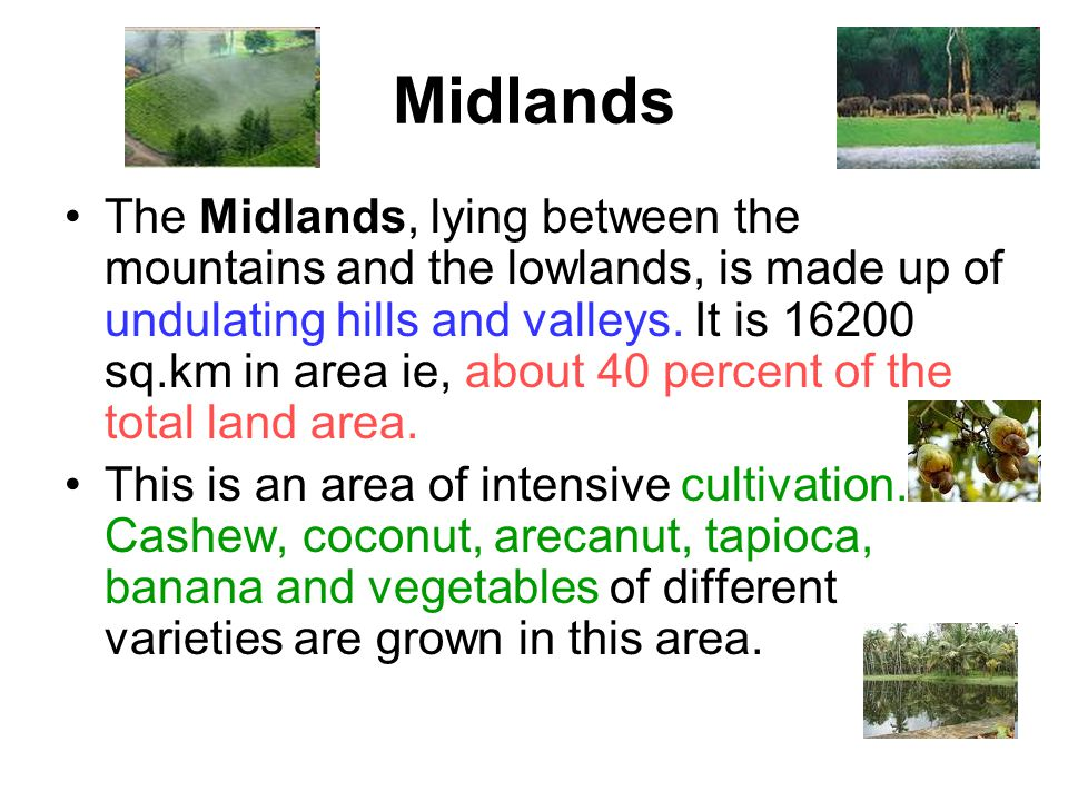 Midlands The Midlands, lying between the mountains and the lowlands, is made up of undulating hills and valleys. It is 16200 sq.km in area ie, about 4