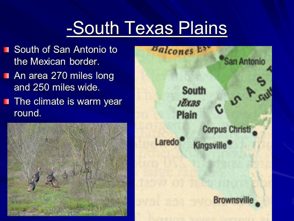 -South Texas Plains South of San Antonio to the Mexican border. An area 270 miles long and 250 miles wide. The climate is warm year round.