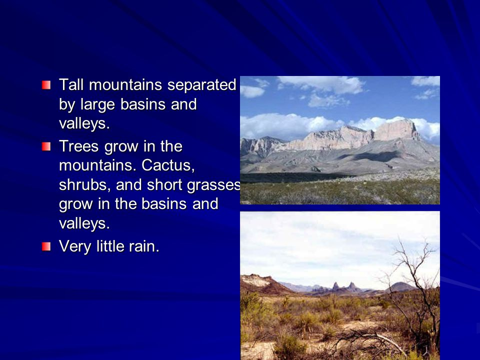 Tall mountains separated by large basins and valleys. Trees grow in the mountains. Cactus, shrubs, and short grasses grow in the basins and valleys. V