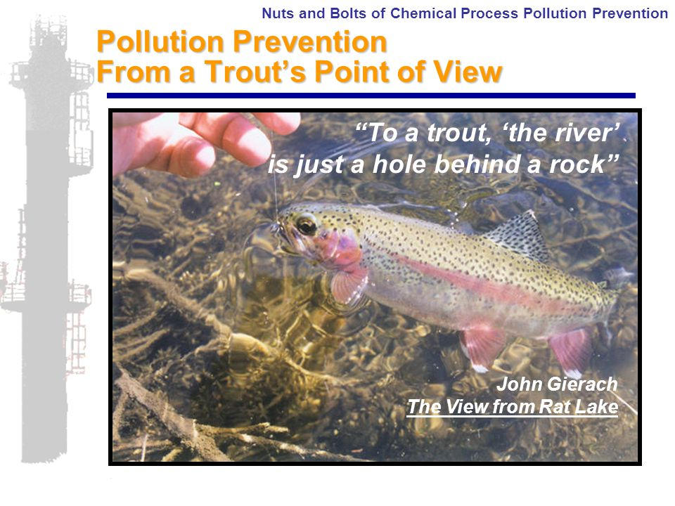 Nuts and Bolts of Chemical Process Pollution Prevention Pollution Prevention From a Trout's Point of View To a trout, 'the river' is just a hole behind a rock John Gierach The View from Rat Lake