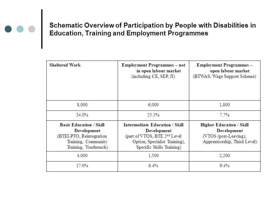 Schematic Overview of Participation by People with Disabilities in Education, Training and Employment Programmes Sheltered WorkEmployment Programmes – not in open labour market (including CE, SEP, JI) Employment Programmes – open labour market (BTWAS, Wage Support Scheme) 8,0006,0001,800 34.0%25.5%7.7% Basic Education / Skill Development (BTEI-PTO, Reintegration Training, Community Training, Youthreach) Intermediate Education / Skill Development (part of VTOS, BTE 2 nd Level Option, Specialist Training), Specific Skills Training) Higher Education / Skill Development (VTOS (post-Leaving), Apprenticeship, Third Level) 4,0001,5002,200 17.0%6.4%9.4%