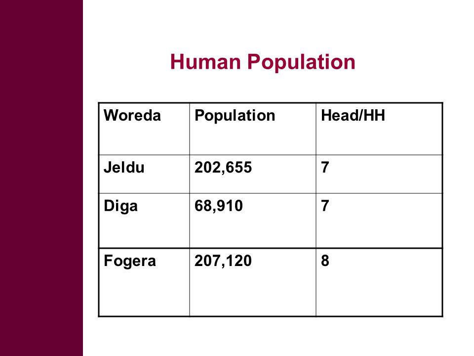 Human Population WoredaPopulationHead/HH Jeldu202,6557 Diga68,9107 Fogera207,1208