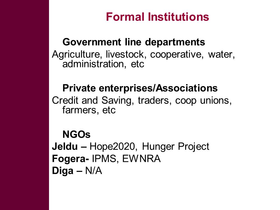 Formal Institutions  Government line departments Agriculture, livestock, cooperative, water, administration, etc  Private enterprises/Associations Credit and Saving, traders, coop unions, farmers, etc  NGOs Jeldu – Hope2020, Hunger Project Fogera- IPMS, EWNRA Diga – N/A