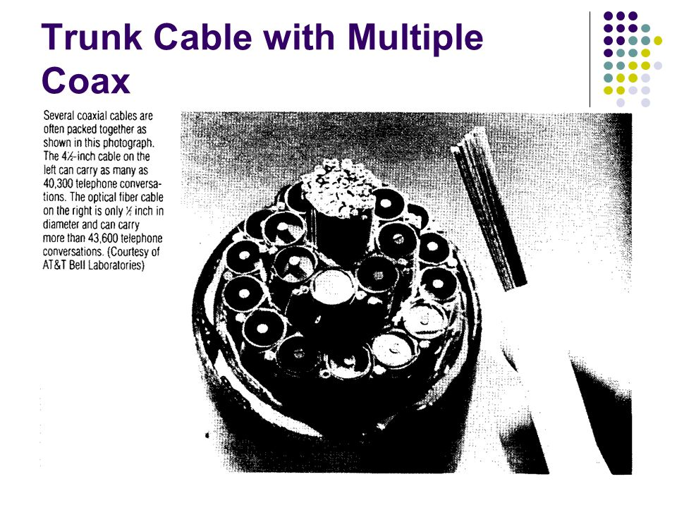 19 Trunk Cable with Multiple Coax