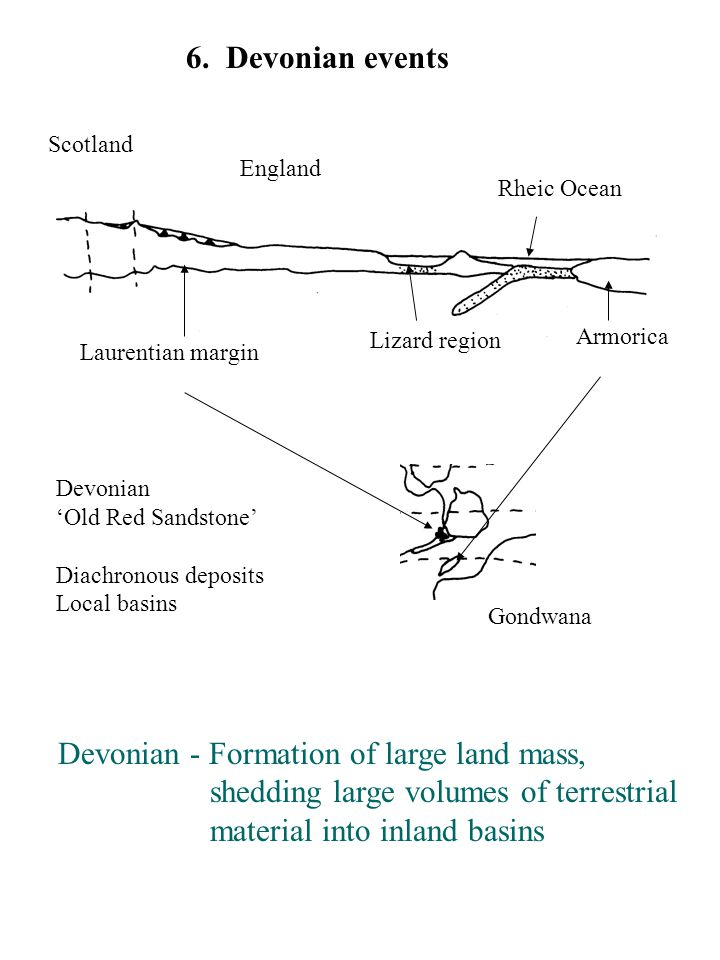 6. Devonian events Devonian - Formation of large land mass, shedding large volumes of terrestrial material into inland basins Lizard region Armorica L