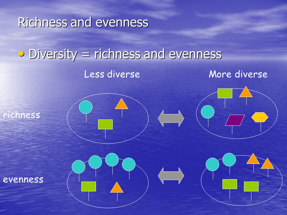 Richness and evenness Diversity = richness and evenness Diversity = richness and evenness Less diverseMore diverse richness evenness