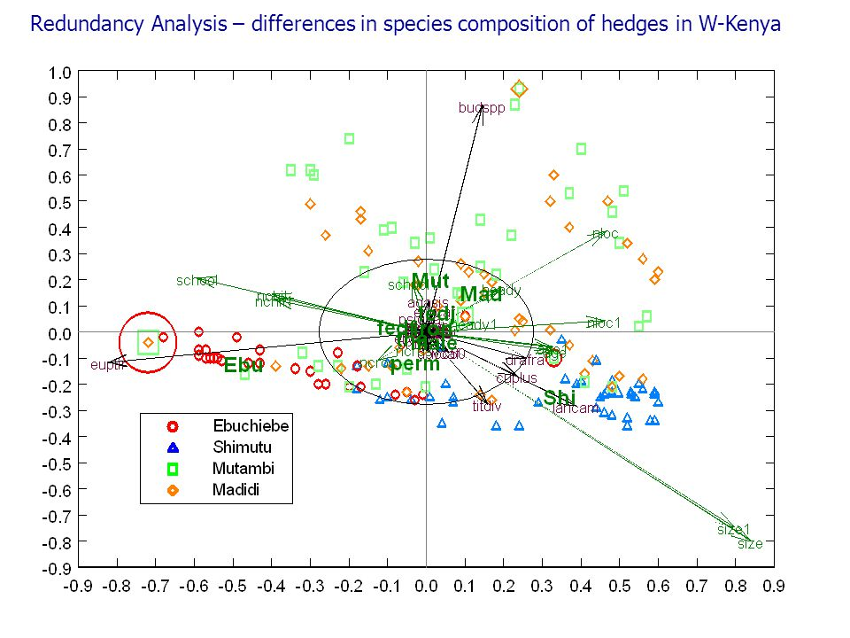 Redundancy Analysis – differences in species composition of hedges in W-Kenya