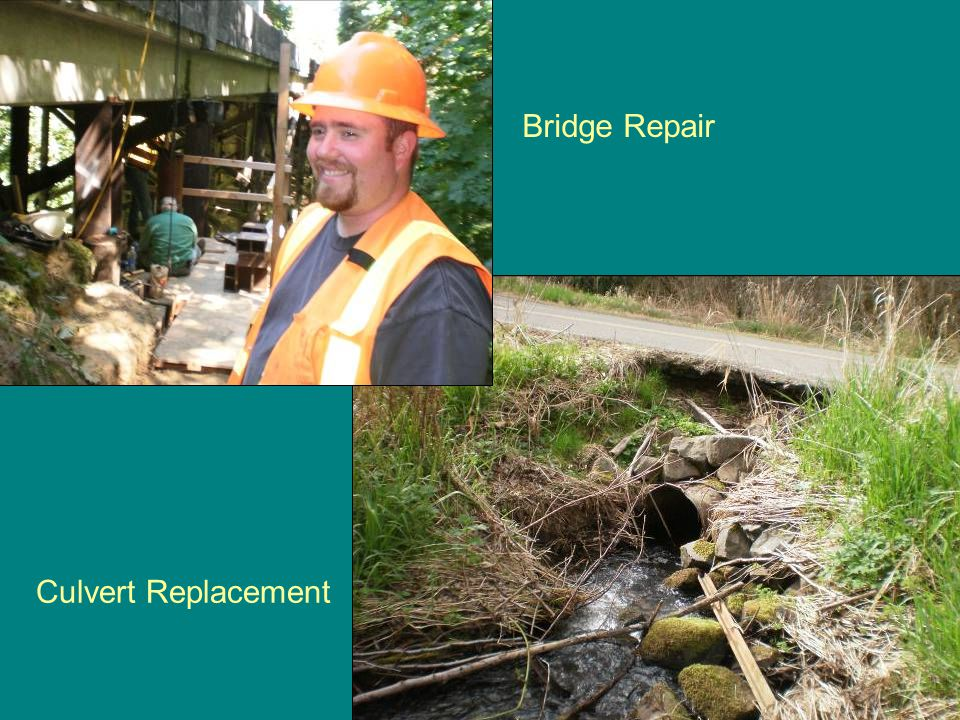 Bridge Repair Culvert Replacement